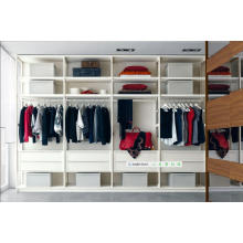 Dubai Deluxe Double Color Wardrobe Design